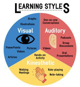 Pie Chart Contain Different Learning Style